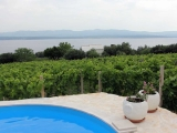 vineyard-villa-bol