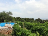 vineyard-villa-pool